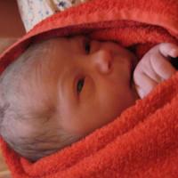 506. nap: Nünüke (Rebeka születése)