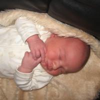 704. nap: Az erő, amely meghozza a kisbabát (Harald)