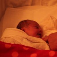 769. nap: Szerelem első látásra (Janka születése)