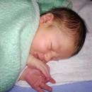 1229. nap: Bálint csodálatos születése (Átjáróházban)