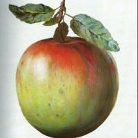 1375. nap: Mint Hófehérkéből az alma… (Soma – doulamese)
