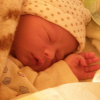 1425. nap: Mire megfőtt a tészta, megszületett a gyermek (Benedek születése)