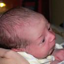 1927. nap: Öntörvényű születés (Barni)