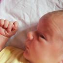1917. nap: Emberfaragás: Háborítatlan szülés, azaz otthonszülés (képriport, Medárd születése)