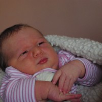 455. nap: A muskotályzsálya finom illata (Kolos születése)