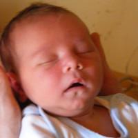 548. nap: Pihe-puha buksi (Levi babám születése)