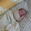 1058. nap: Gyógyító szülés (Áron)