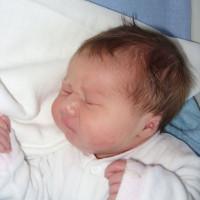 1411. nap: A 42. héten szülni kell (Boróka születése)