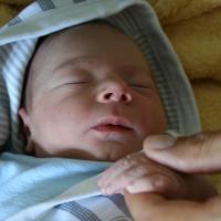 Még 1 mese: Békében és szeretetben (Bors születése)
